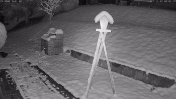 snapshot-IN-9008-FULL-HD-Test-schnee-nachts