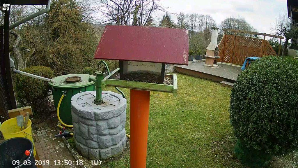 EZVIZ-Ueberwachungskamera-CTQ3W-C3W-Vogelhaus-Sonnentag2